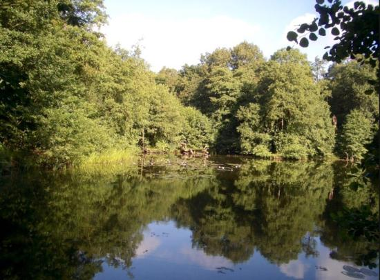 move to stanmore for the County Park